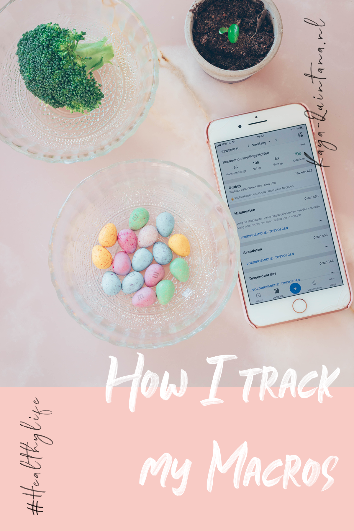 How I track my macros